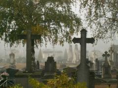 medium_cimetière 005.jpg
