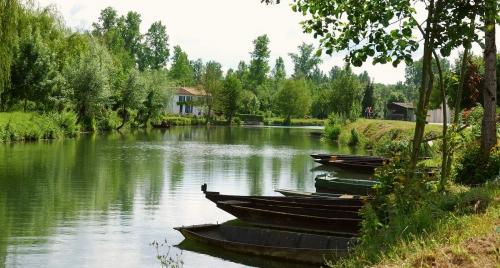 1_barques-du-marais-poitevin.jpg