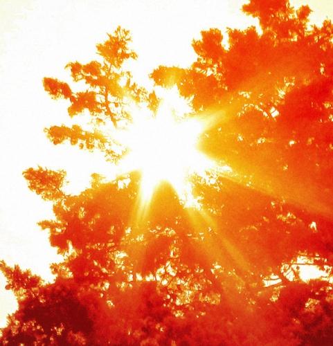 soleil_automne.jpg