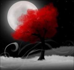 1_arbre_rouge.jpg