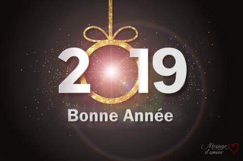 Carte-de-bonne-année-2019.jpg