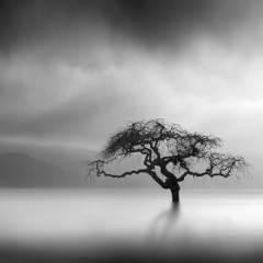 george-digalakis-surreal-nature-photography-9.jpg